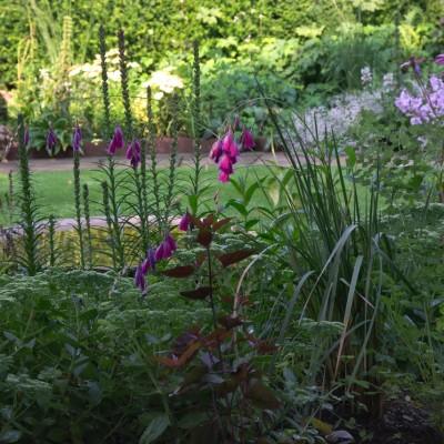 Sybil's garden planting , York Gate garden, Adel, Leeds