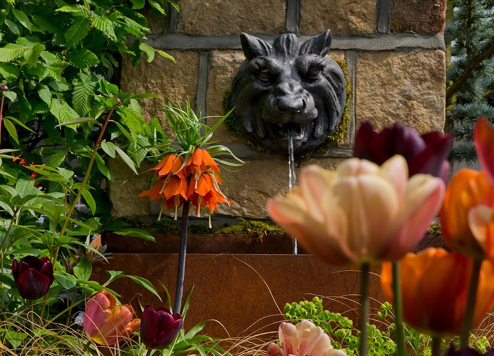 Harrogate Spring Show 2014 | Leeds Garden Designer