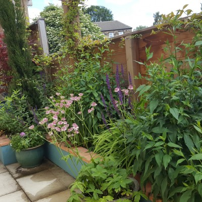 Mediterranean planting and outdoor seating, Horsforth back yard