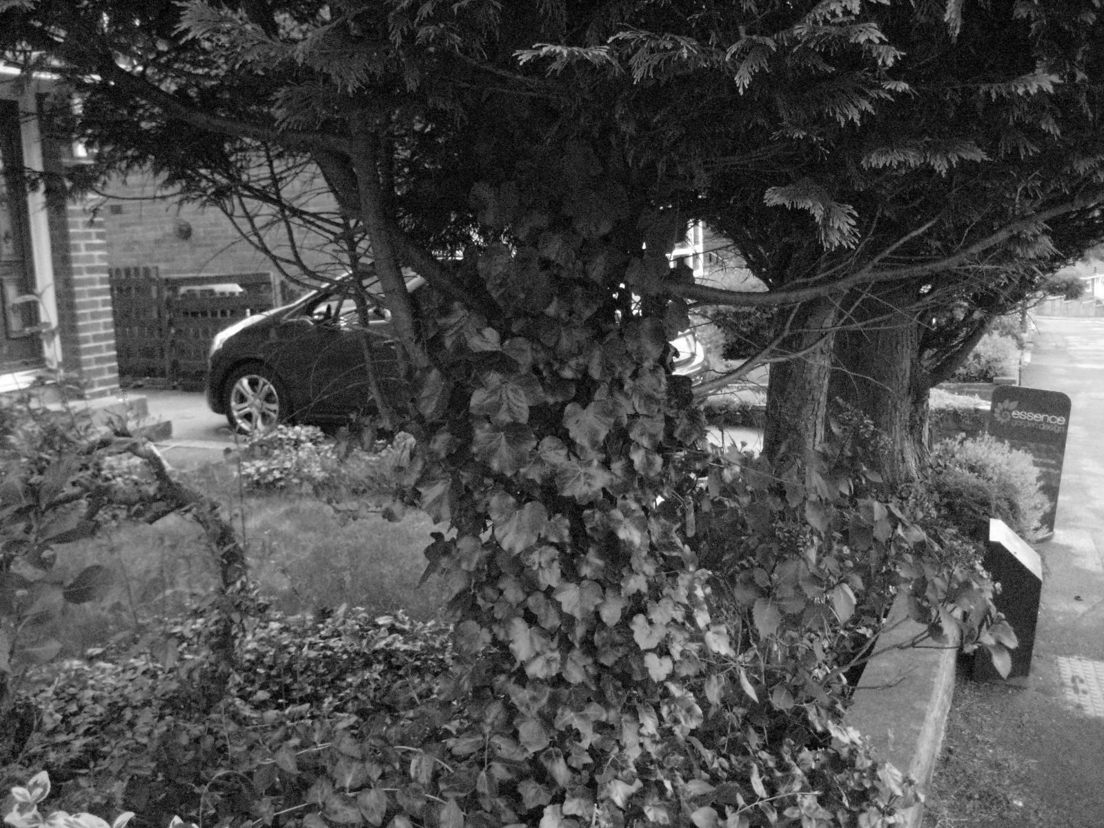 Garage and Gardens, Cookridge, Leeds | Leeds Garden Designer