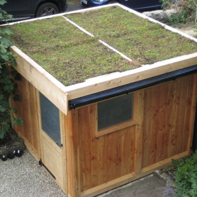 Shed with sedum green roof, back yard, Horsforth, Leeds. Rainwater harvesting.