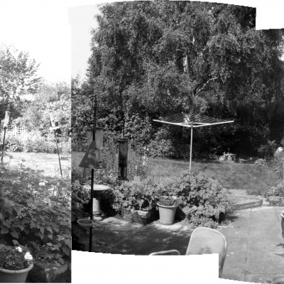 Bee friendly back garden- Before picture, Headingley